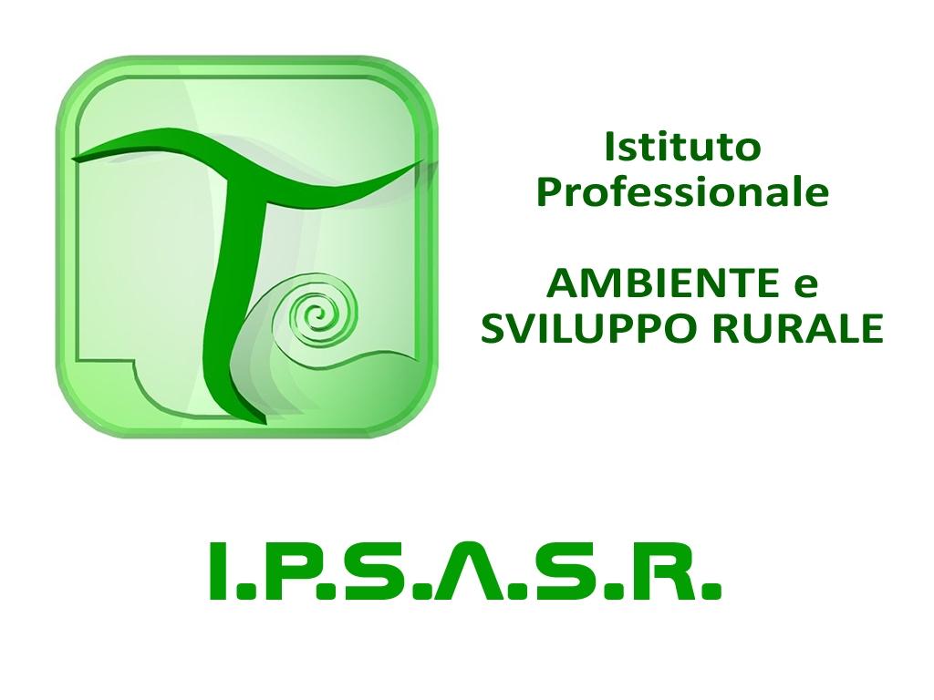 IPSASR-VIDEOLINA-LOGO