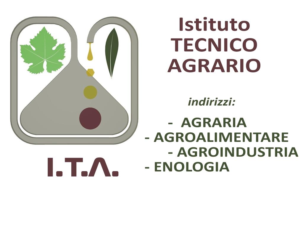 ITA-VIDEOLINA-LOGO